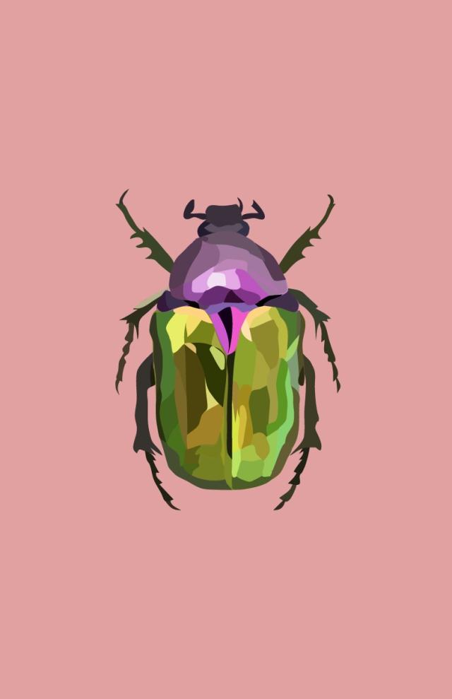 Beetle3